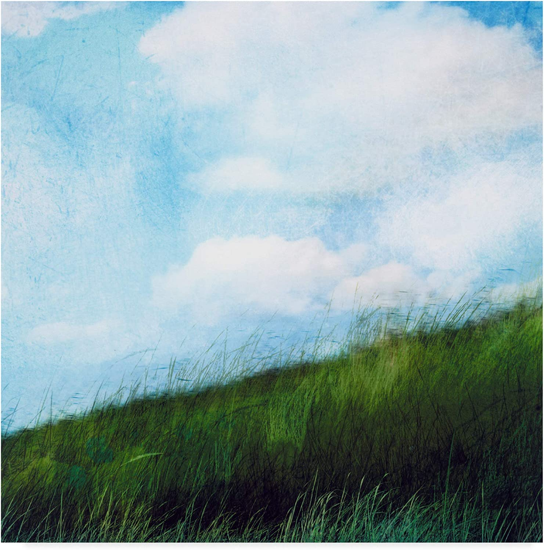 Trademark Fine Art Bright Field Ii by Ingrid Blixt, 14x14-Inch