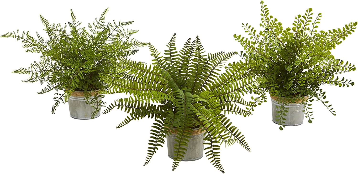 """Nearly Natural Beauty products Artificial Plant 14"""" Ferns with Assorted Planter Challenge the lowest price of Japan"""