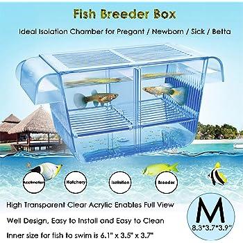 capetsma Fish Breeding Box, Acrylic Fish Isolation Box with Suction Cups, Aquarium Acclimation Hatchery Incubator for Baby Fishes Shrimp Clownfish and Guppy.