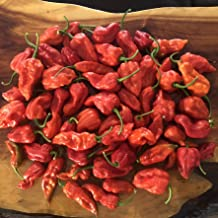 Fresh Super Hot Peppers - Mixed Box: All Red & Orange Colored Peppers