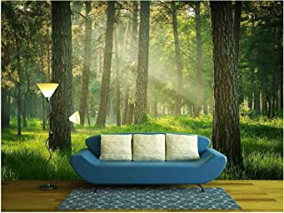 wall26 - Forest - Removable Wall Mural | Self-adhesive Large Wallpaper - 66x96 inches