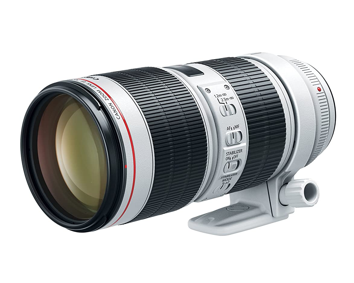 Canon EF 70-200mm f/2.8L is III USM Lens for Canon Digital SLR Cameras