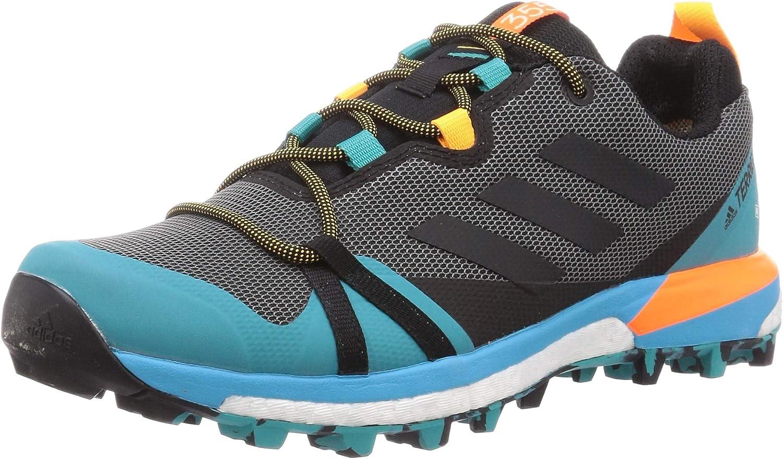 adidas Terrex Skychaser Lt GTX, Zapatillas de Hiking Hombre