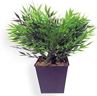WHW Whole House Worlds The Realistic Bamboo Faux Potted Plant, Realistic Leaves and Stems, Square Black Pot, Approx. 15
