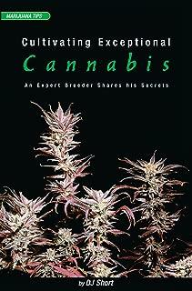 Cultivating Exceptional Cannabis: An Expert Breeder Shares His Secrets (Marijuana Tips Series)
