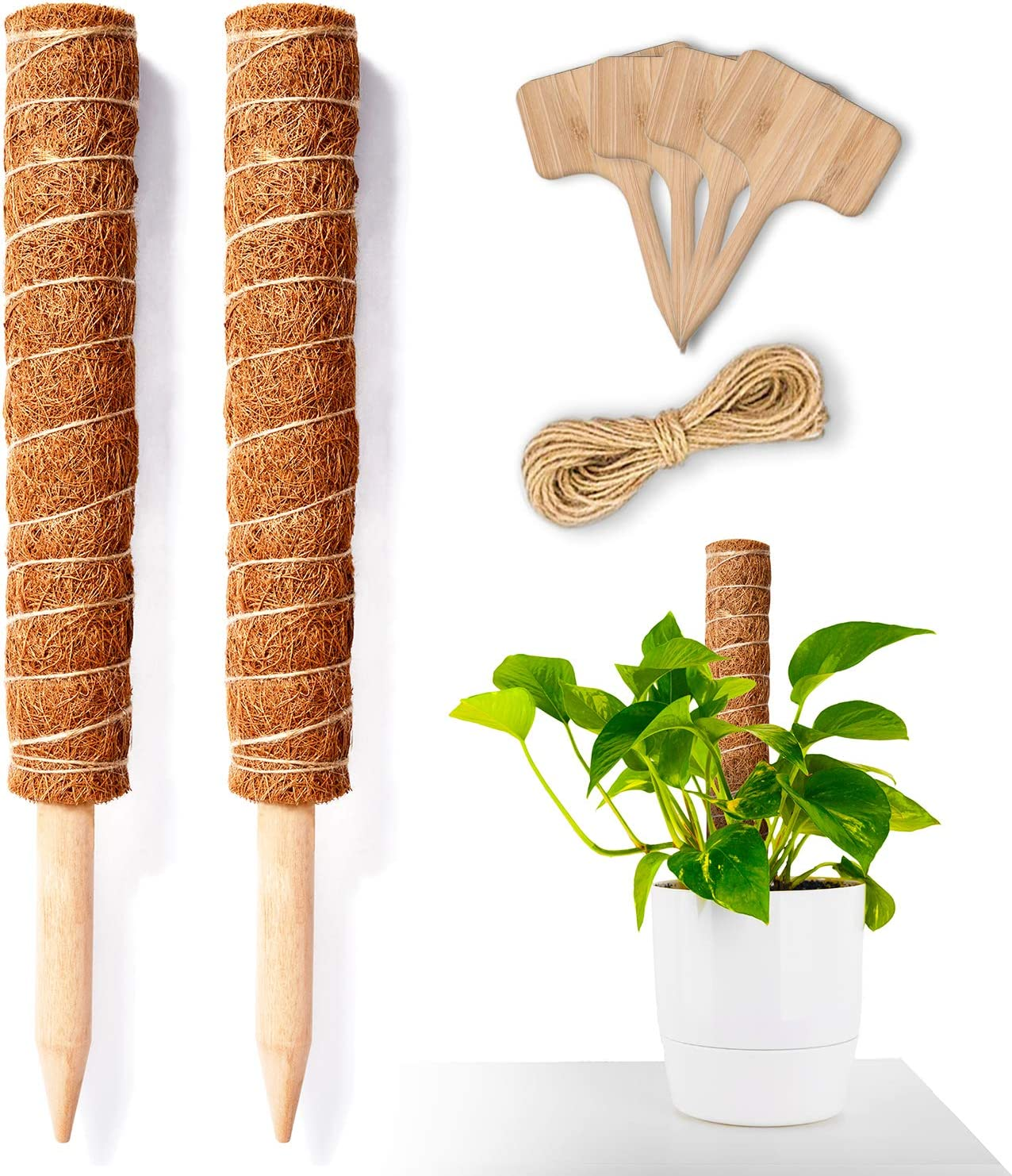 Ourtroness Moss Pole Monstera Tucson Mall Plant Support 16 2PCS Inc - Tulsa Mall Stakes