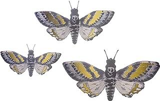 Best martha stewart butterfly Reviews