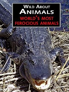 World's Most Ferocious Animals
