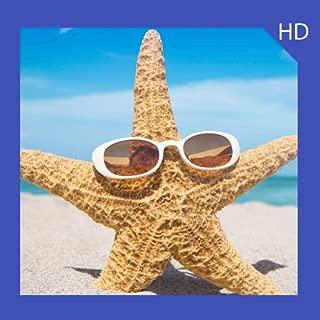 Starfish Wallpaper HD Free