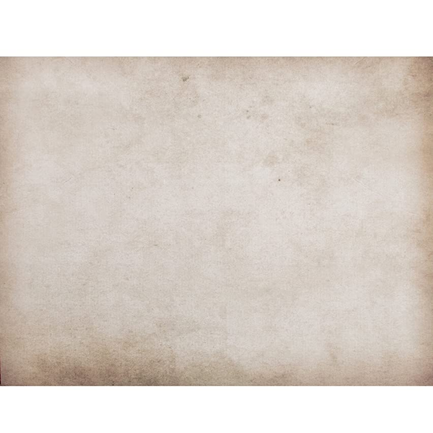 American Crafts Shop 12 Pack of 22 x 28 Inch Poster Board Parchment, Piece