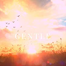 Gentle Classical Music Playlist for Studying