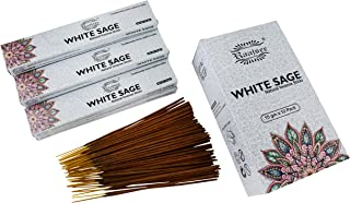 raajsee 15 GMS x 12 Pack White Sage Incense Sticks,100% Pure Organic Natural Hand Rolled Free from Chemicals - Perfect for...