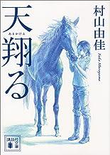 表紙: 天翔る (講談社文庫) | 村山由佳