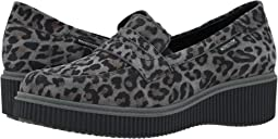 Dark Grey Leopardo