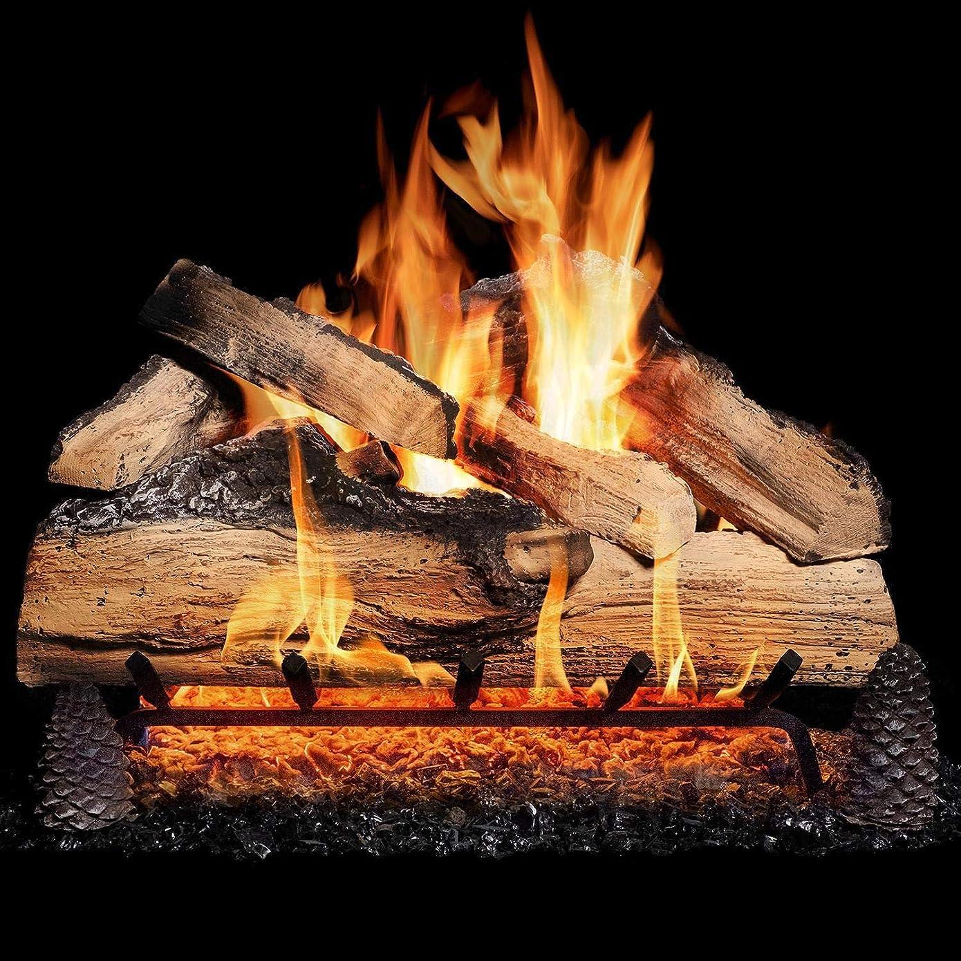 ピニオンダーリン共産主義者Alpine Flame 18インチGrand Mountain分割オークVented天然ガスログセット+ h-burner +基本的なon/offリモート