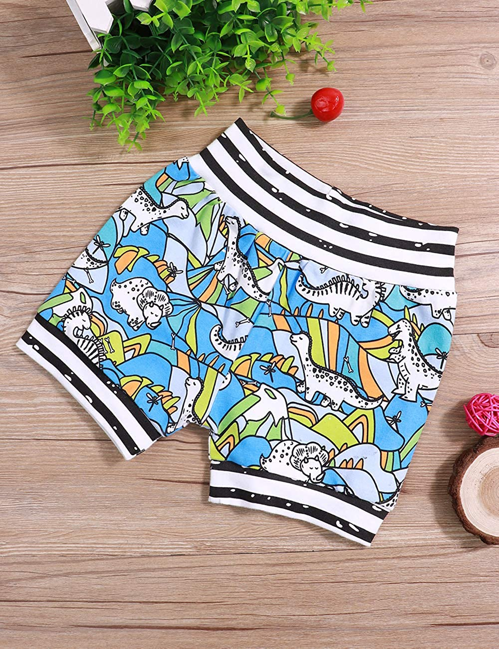 Toddler Baby Boy Clothes Rawr Letter Print Short Sleeve Top Dinosaur Pants Shorts Outfits Set