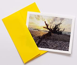 Driftwood Note Cards Original Elegant Photographic Smooth/Matte White Blank 4.25