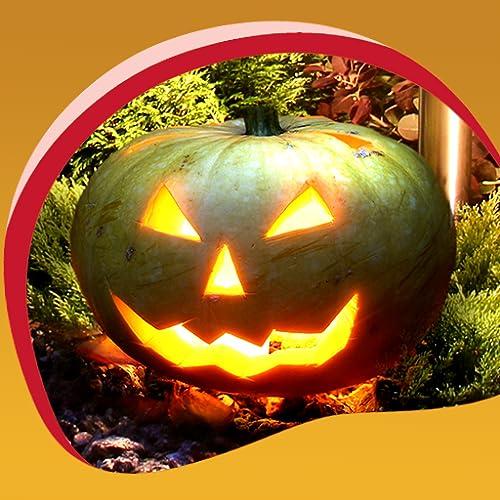 Halloween Live Hintergrundbilder