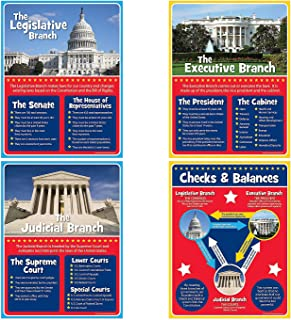 Best checks and balances poster Reviews