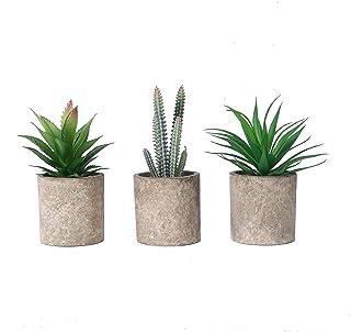 THE BLOOM TIMES Set of 3 Small Artificial Succulents Plants in Pots Mini Fake Succulent Plants Faux Grass Cactus Aloe Pott...