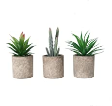 THE BLOOM TIMES Set of 3 Small Artificial Succulents Plants in Pots Mini Fake Succulents Faux Plants Potted Plastic Grass ...