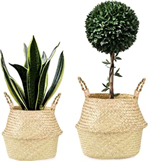 MoonLa Natural Seagrass Belly Basket Foldable Woven Plant Basket with Handles for Storage, Nursery Laundry Tote Picnic Beach Bag Plant Pot Cover 2 Pcs(S & M)