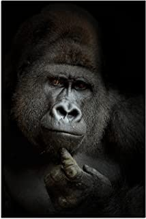 JP London Solvent Free Print PAPM1X823823 ego Cogito, Ergo Sum Gorilla The Thinker Evolution Portrait Ready to Frame Poster Wall Art 36