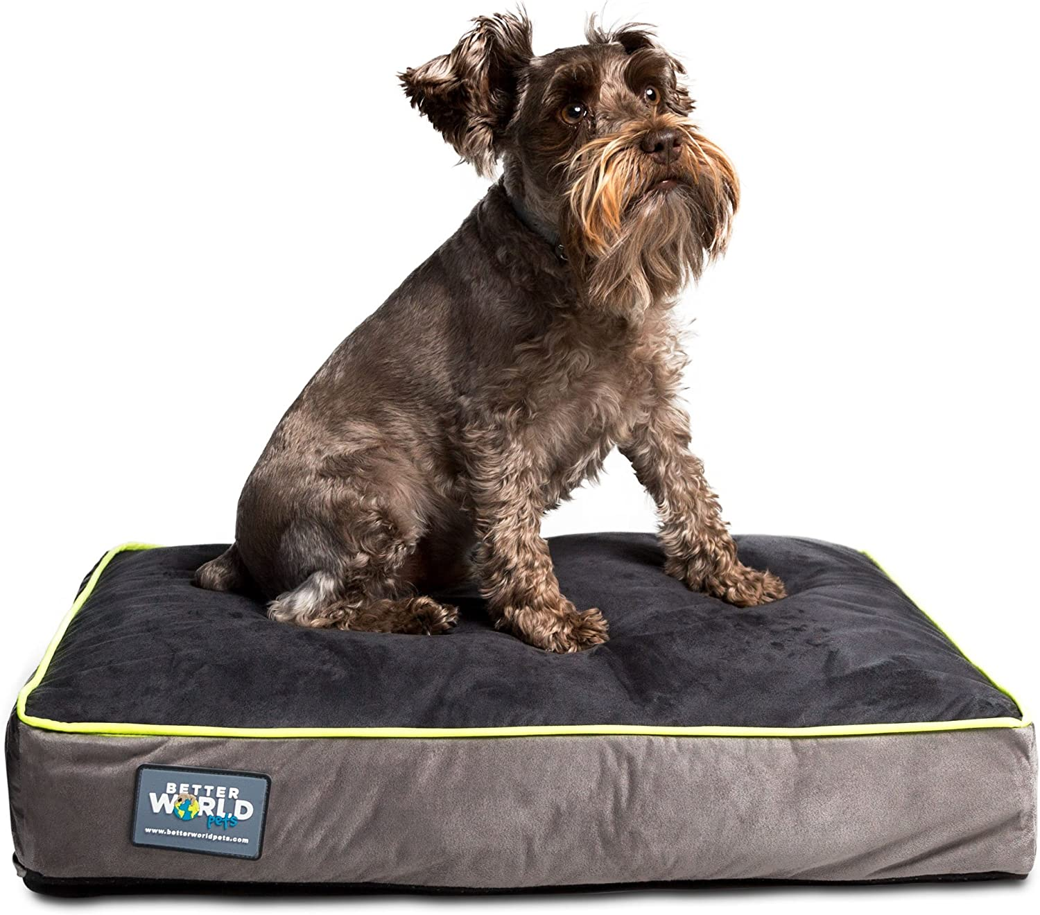 FirstQuality 5  Thick Orthopedic Dog Bed   Pure Premium Memory Foam   Ideal for Aging Dogs   Waterproof   Helps Ease Pain of Arthritis & Hip Dysplasia   180 GSM Removable Washable Cover