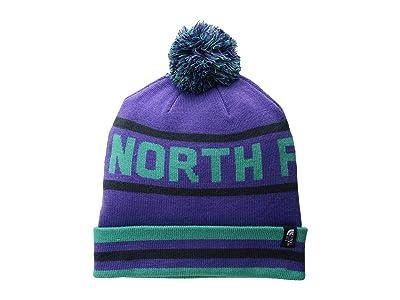 The North Face Ski Tuke V (Deep Blue/Porcelain Green Multi) Beanies
