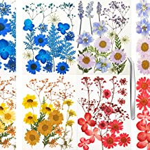 105pcs Real Dried Flowers Leaves Natural Pressed Mixed Dry Flower for DIY Jewelry Resin Soap Candle Making Art Crafts Floral Decoration Multi Color with Tweezers