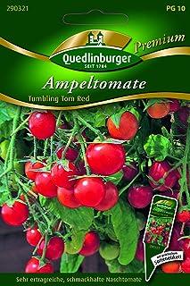 Ampel-Tomate, Tumbling Tom Red F1 Quedlinburger Saatgut Samen 290321
