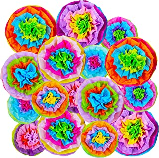SUPLA 16 Pcs Fiesta Paper Flowers Pom Poms Flowers Tissue Pom Poms Fiesta Flower Tissue Centerpieces for Mexican Rainbow Theme Party Fiesta Cinco De Mayo Party Frida Kahlo Party Decoration