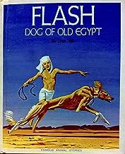 Flash, dog of old Egypt