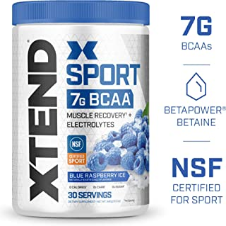 Scivation XTEND Sport BCAA Powder Blue raspberry | NSF Certified for Sport + Sugar Free Post Workout Muscle Recovery Drink with Amino Acids 30 Servings | Packaging May Vary