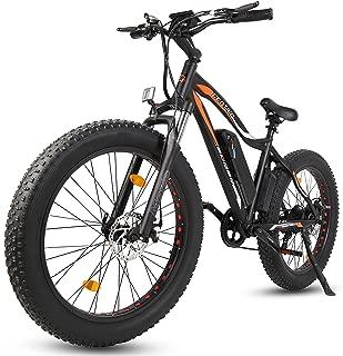 ECOTRIC Fat Tire Powerful Electric Bike Black Beach Snow Mountain 26