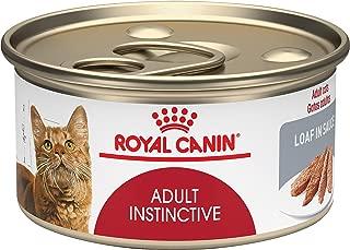 Best wet cat food dispenser Reviews