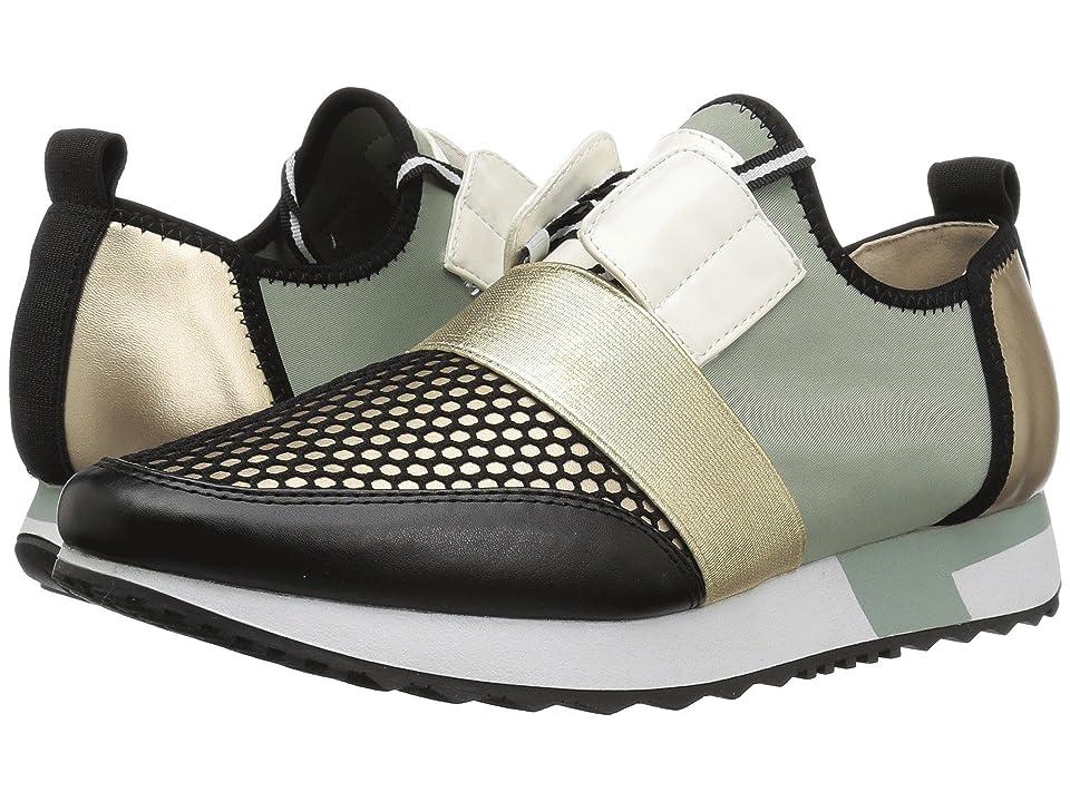 Steve Madden Antics Sneaker (Green Multi) Women