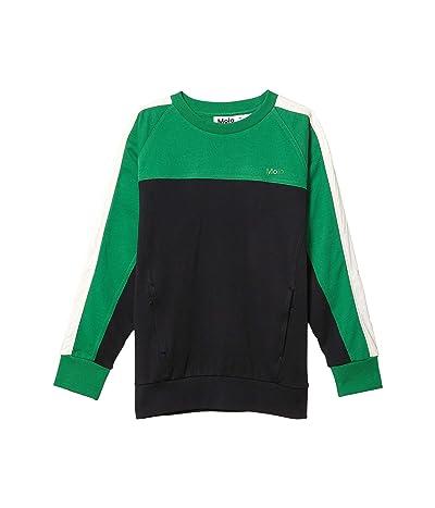 Molo Miwo Sweater (Little Kids/Big Kids) (Jungle) Boy