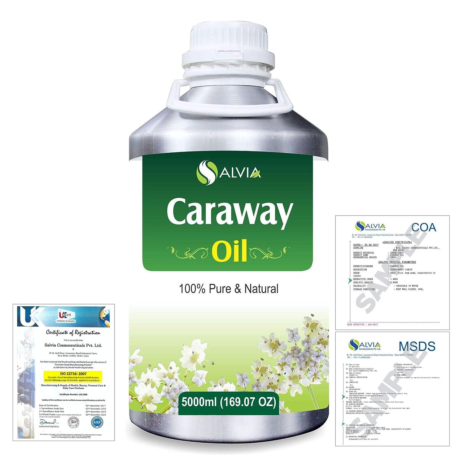 朝食を食べる兵士スリムCaraway (Carum carvi) 100% Natural Pure Essential Oil 5000ml/169fl.oz.