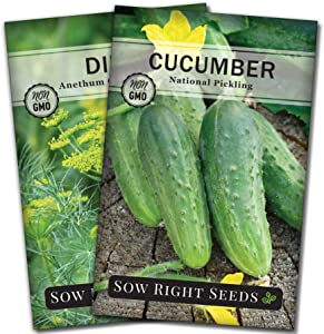 Sow Right Seeds - Pickling Seed Collection for Planting - Non-GMO Heirloom Cucumber and Dill Herb Seeds with Instructions to Plant and Grow Your Own Home Vegetable Garden, Great Gardening Gift