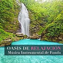 Oasis de Relajación - Música Instrumental de Fondo New Age para Calmar Ira, Estrés y Ansiedad