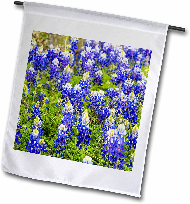3dRose Danita Delimont - Chuck Haney - Flowers - Bluebonnet Flowers Near Willow City, Texas, USA - 12 x 18 inch Garden Flag (fl_190031_1)
