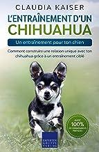 L'entraînement d'un chihuahua – un entraînement pour ton chien: Comment construire une relation unique avec ton chihuahua ...
