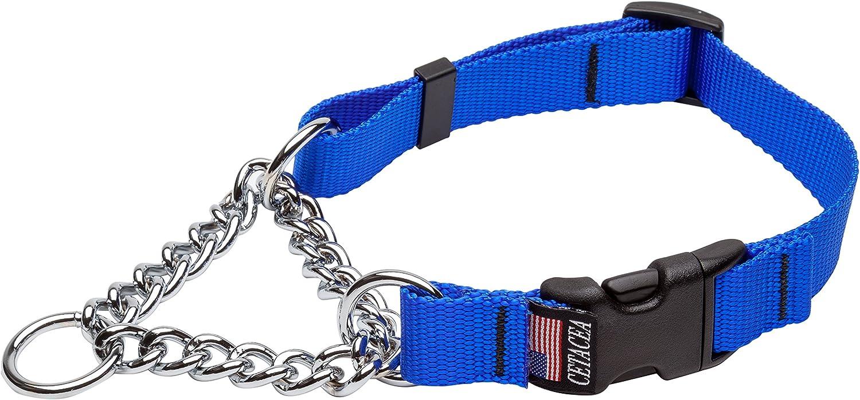 Cetacea Chain Martingale Dog Pet Collar with Quick Release, Medium, bluee