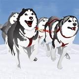 sleddog gara invernale: il cane slitta freddo ghiaccio nel polo nord - edizione gratuita