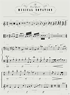 Pop Chart Lab P2-MusicNotes Sheet Visual Guide to Musical Notation Poster Print, 18