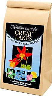 Great Lakes Wildflower Seed Mix - A Beautiful Collection of Twelve annuals and perennials - Enjoy The Natural Beauty of Great Lakes Flowers in Your own Home Garden