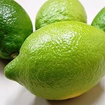 国産 (広島県産)レモン 防腐剤・防かび剤不使用 ノーワックス (1kg)