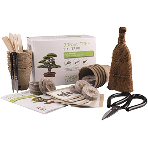 Kit de cultivo interior: Amazon.es