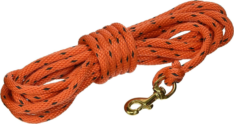 OmniPet 20' Check Cord, orange Black, XSmall